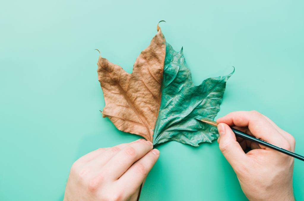 Lava za Lepotu i zdravlje: Kako da otkrijete svoju životnu svrhu u 5 koraka